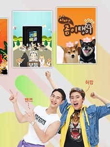 CJ ENM 1인 창작자 전문 케이블 방송 CH.다이아 티비 2019년 봄 개편