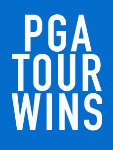 임성재선수 PGA 첫 우승을 거머쥐다 - 이미지