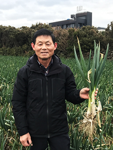 CJ프레시웨이, 산지 계약재배로 ''제주 대파, 양배추'' 전국화 박차