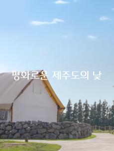 [멍.확.행] EP.07 힐링이 필요할땐?~😆 제주 돌담길 moment !🙋