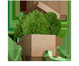 친환경 박스